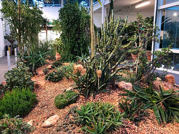 orto botanicxo padova