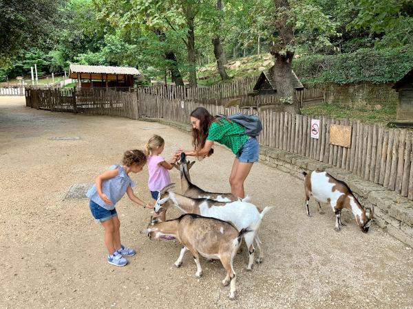 mamme e bambine che danno da mangiare alle capre
