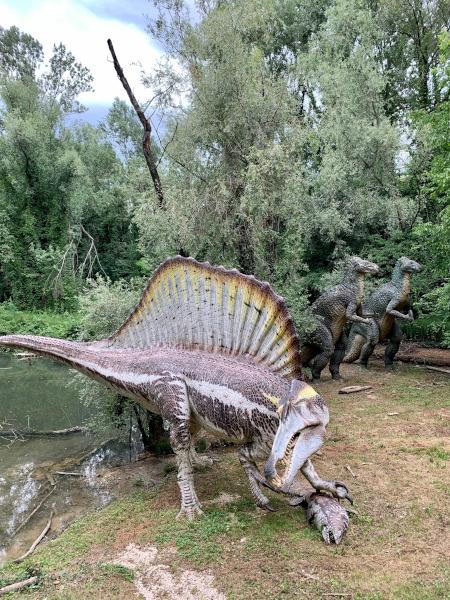 riproduzione dinosauri a grandezza naturale