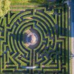 labirinto di bosso